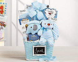 Adorable Baby Boy Gift Basket