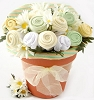 New Baby Blossoms Gift Bouquet