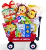 Baby Einstein Jungle Friends Gift Basket