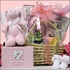 Baby Essentials ~For Girl: Baby Gift Basket Sale