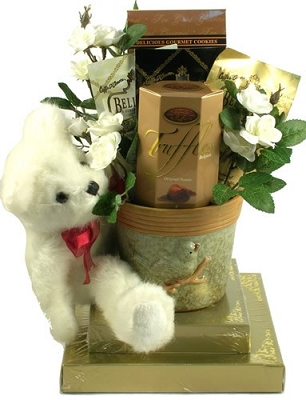Best Wishes Teddy Bear Gift Basket