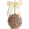 Confetti Celebration: CarameL Chocolate Gourmet Apple