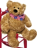 Gund Freedom Teddy Bear
