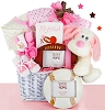 Little Girl All Star Baby Gift Basket