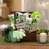 Delightful Cucumber Melon Spa Gift Basket