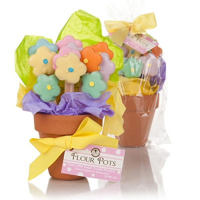 Cookies Flower Pot