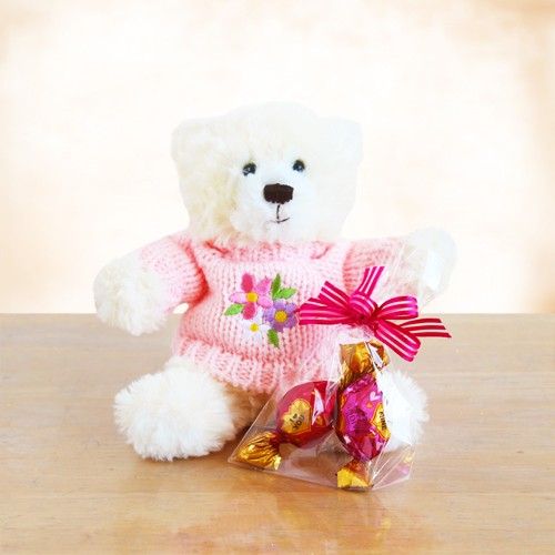 My Special Valentine Teddy Bear Gift