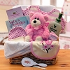 New Baby Girl Organic Gift Basket