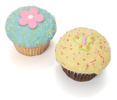 Spring Belgian Chocolate Gourmet Cupcakes Box of 6