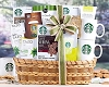 Starbucks Extravaganza: Deluxe Coffee Gift Basket
