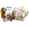 Twin Births Baby Gift Basket