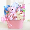 Welcome Greetings for Baby Girl Basket