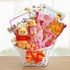 Winnie The Pooh New Baby Girl Gift Basket