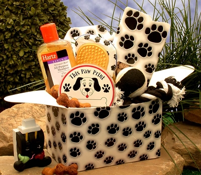 You and Your Pooch! Pet Dog Gift Basket
