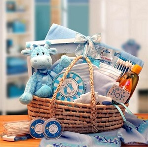 Precious New Baby Carrier Gift Basket