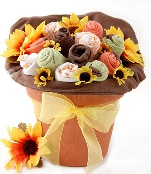 Sunburst Organic Baby Blossoms Gift Bouquet