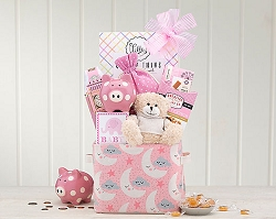 Adorable Baby Girl Gift Basket -Canada