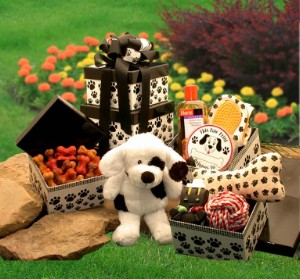 Doggy Lover's Gift Basket