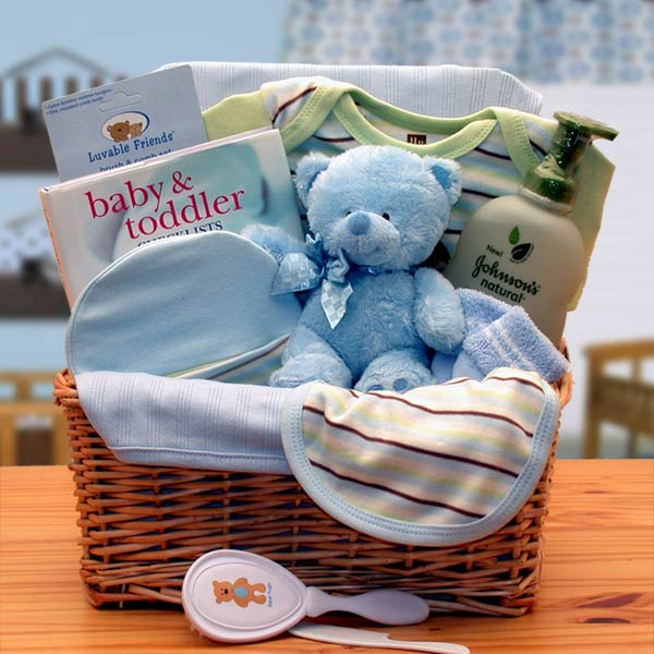 Organic New Baby Boy Gift Basket