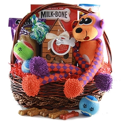 Dogs Fun Day: Pet Dog Gift Basket