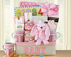 Welcome To The World Baby Girl Gift Basket