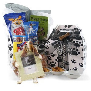 Man's Favorite Friend; Dog Gift Basket